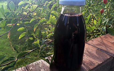 Mop Sauce – Amarenakirsch