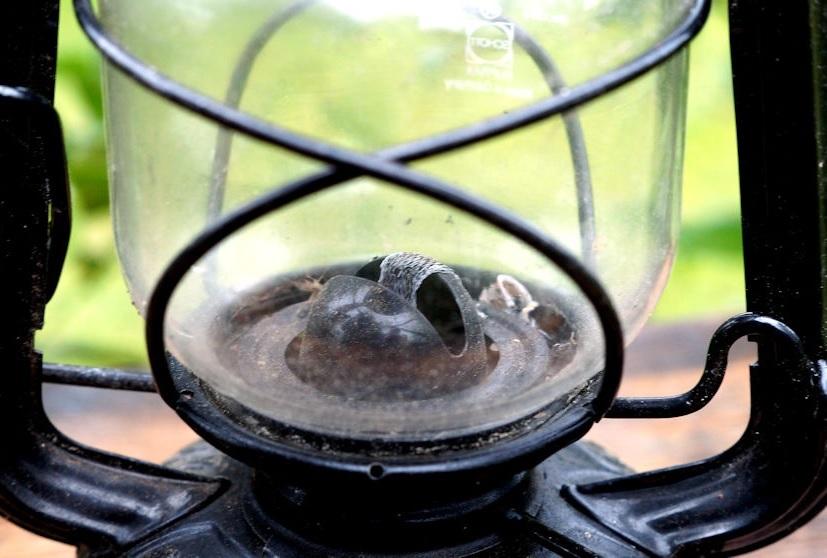 Feuerhand Brenner eingebaut